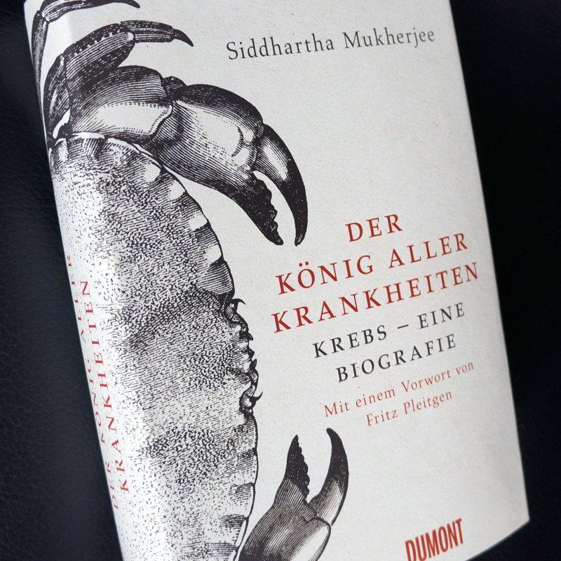 Buchcover König aller Krankheiten_komp
